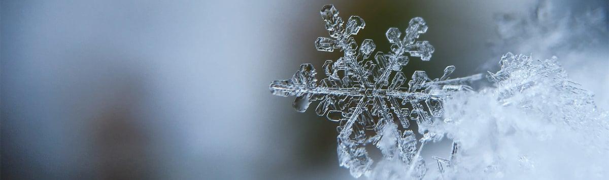 snow-flake-winter-ice